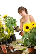 gardening - smiling woman holding flower pot with sunflower - stock photo