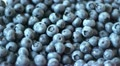 HD1080p Fresh wild berries for Breakfast Footage