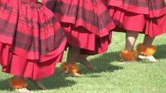 Hawaiian Hula Dancers Red Stock Footage