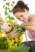 gardening - woman cutting tree with pruning shears - stock photo