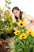 Gardening - woman cutting sunflowers and plants Stock Photos