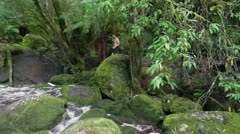 Male entering raging river in very green rainforest to go for a swim. Stock Footage
