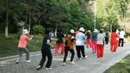 Taiji Fitness Chinese Tai Chi Exercise Nanjing Park Elderly People Meditatation Stock Footage