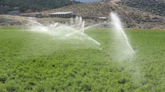 Farm crop irrigation sprinklers P HD 0755 Stock Footage