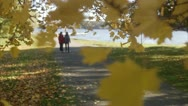 Mother and daughter walking in a park Stock Footage