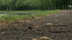 Woman jogging in a park Stock Footage