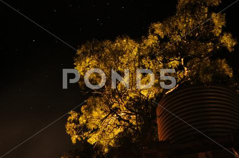 Stock photo of Watertower @ Night.JPG