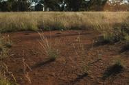 Stock Photo of Outback dirt.JPG
