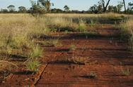 Stock Photo of Red dirt.JPG