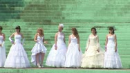 Stock Video Footage of Parade of brides (zoom out)