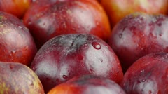 Fresh delicious peaches & nectarines. Stock Footage