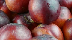 Fresh delicious peaches & nectarines. Stock Footage