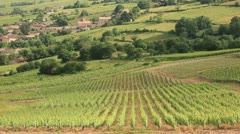 The village of Chasselas amongst the vineyards of Burgundy. - stock footage