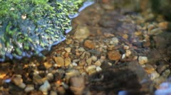 Clean water paradise stream (4/4) Stock Footage
