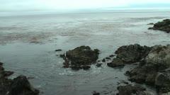 Ocean Shot in Carmel, 17 mile loop. Trees, Rocks Stock Footage
