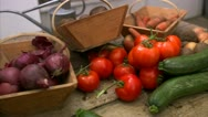 Stock Video Footage of Onions, tomatoes, squash an carrots