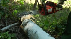 anonymus lumberjack at work cutting wood 3 - stock footage