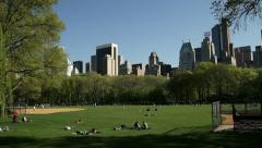 NYC Skyline From Central Park - stock footage