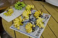 Bunches of local banans on newspaper Stock Photos