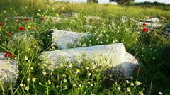 Red poppies flowers near ancient ruins in Side, Turkey Stock Footage