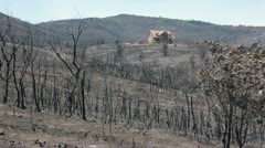 Luxury house survived mountain wildfire P HD 0978 - stock footage