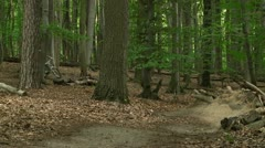 Downhill racing in forest Stock Footage