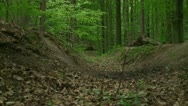 Stock Video Footage of Downhill racing in forest