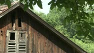Old shack in forest Stock Footage