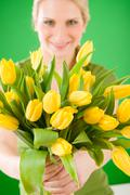 Young woman hold yellow tulips flower Stock Photos