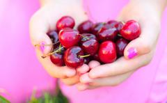 sweet cherries in beautiful hands - stock photo