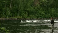 A man fly-fishing in a river Stock Footage
