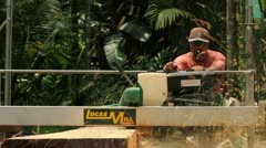 Lumber Milling in Jungle - stock footage