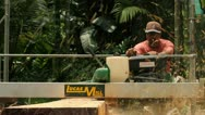 Stock Video Footage of Lumber Milling in Jungle
