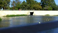 Stock Video Footage of Treated Sewage Entering San Gabriel River Zoom 2