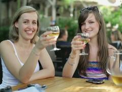 Female friends raising a toast to camera with white wine NTSC Stock Footage