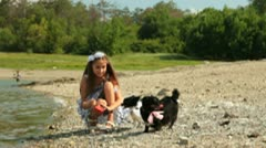 Little Girl with Chihuahua Stock Footage