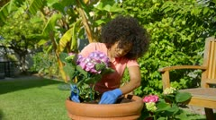 Woman potting flowers Stock Footage
