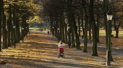 Mother walking with perambulator Stock Footage