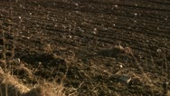 View of farming land Stock Footage