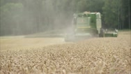 WS SELECTIVE FOCUS Wheat field, combine harvester in background Stock Footage