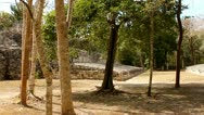 Stock Video Footage of Ballcourt, Mayan Ruins Becan Mexico