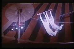 Four trapeze artists switching bars in midair Stock Footage