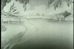 Frog swimming in pond Stock Footage