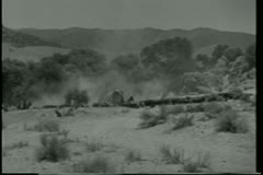 Wide shot cow herd moving through mountain range Stock Footage