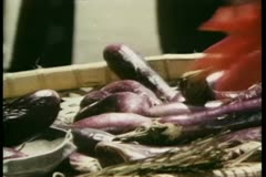 Close-up hand counting out eggplants in outdoor market - stock footage