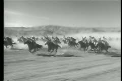 Moroccan cavalry charging through desert Stock Footage