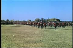 Medieval soldiers running across field Stock Footage