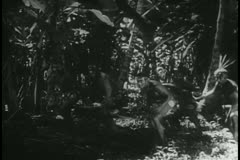 Natives running into the jungle then changing direction Stock Footage