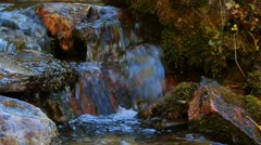 Mountain Stream with Aspen leaves Stock Footage
