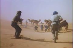 Shootout in desert Stock Footage